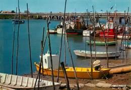 85 - L'Aiguillon Sur Mer - Le Port - Bateaux - Carte Neuve - Voir Scans Recto-Verso - Autres Communes