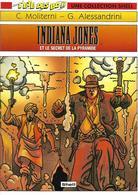 Lot De Deux BD Shell Indiana Jones Et La Cité De La Foudre Et Le Secret De La Pyramide - Lots De Plusieurs BD