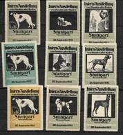 Stuttgart - Ausstellung Von Hunden Aller Rassen - 28 September 1913 - Erinnophilie