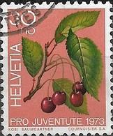 SWITZERLAND 1973 Children's Fund. 'Fruits Of The Forest' - 30c.+10c - Cherries FU - Pro Juventute