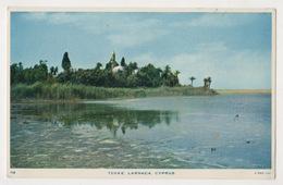 CYPRUS TEKKE LARNACA POSTCARD - Chipre