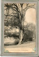 CPA - VAULX (VAUX-de-CERNAY (78) -Thème: Arbre - Le Chêne Creux Et L'étang Du Grand Moulin - 1910 - Vaux De Cernay