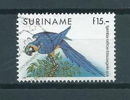 1991 Suriname Birds,oiseaux,vogels,vögel,blauwgele Ara Used/gebruikt/oblitere - Surinam
