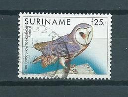 1993 Suriname Birds,oiseaux,vogels,vögel,kerkuil Used/gebruikt/oblitere - Surinam