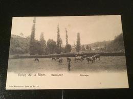 Bastendorf - Postcards