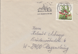 83991- CRANBERRIES STAMP ON COVER, ST WENDEL SPECIAL POSTMARK, 1992, GERMANY - Storia Postale
