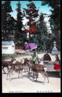 CPA ANCIENNE JAPON- NARA- ENTRÉE DE KASUGA PARK- MARCHANDS AMBULANTS- DAIMS APPRIVOISÉS- ANIMATION - Sonstige