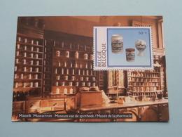MAASEIK Museactron Museum Van De APOTHEEK - Musée De PHARMACIE > 1994 ( Postzegelvel Van 50 ) ! - Maaseik