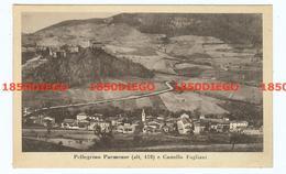 PELLEGRINO PARMENSE - E CASTELLO FOGLIANI F/PICCOLO VIAGGIATA - Parma
