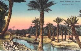 ** Lot 2 Cartes ** ARBRE Tree PALMIERS Palm Trees MAGHREB  Jolies CPA Colorisées - Bome Boom Albero árbol / Palmen Palme - Bäume