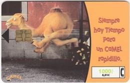 Espagne - CAMEL - Cigarettes 1000 Ptas - 6,01€ (Il Y A Toujours Du Temps Pour Un Chameau Rapide) - Werbung