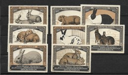 Konijnen : Kaninchenfreude Bockenheim, 1913 - Erinnofilia