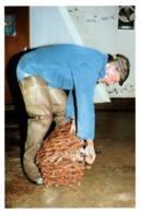 CPM - MARENNES - OSTREICULTURE - Emballage à L'ancienne ... - Edition Hélico-Phot - Marennes