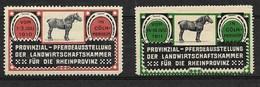 Pferdeausstellung Rheinprovinz, Cöln-Merheim, 1910 - Erinnofilia