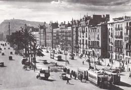 Nº 4169 POSTAL DE TRANVIA DE BARCELONA EN EL PASEO DE COLON (TREN-TRAIN-ZUG) AMICS DEL FERROCARRIL - Tranvía
