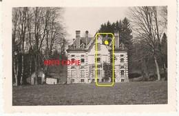 WW2 Rare PHOTO ORIGINALE ALLEMANDE étendard Flotte Sur Le Château De Mérode à MAÎCHE Montbeliard 25 DOUBS N°2 - 1939-45