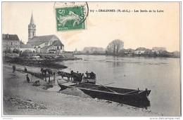 CHALONNES - Les Bords De La Loire (attelage D'âne) - Chalonnes Sur Loire
