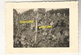 WW2 PHOTO ORIGINALE Soldats Allemands Dans Les Vignes à DIGOIN Près Paray Le Monial SAONE ET LOIRE - 1939-45