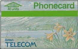 REINO UNIDO. FLOWERS. Spring '90 - Daffodils. 40U. 022F. 02/1990. BTC-021. (601) - Flores