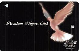 Casino Magic - Biloxi, MS - BLANK 4th Issue Slot Card   ...[RSC]... - Casino Cards
