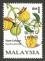 MALAYSIA. 1998. 1RM FRUIT. USED BUKIT RAJA POSTMARK - Malaysia (1964-...)