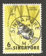 SINGAPORE. 1969. 6c FISH USED - Singapore (1959-...)