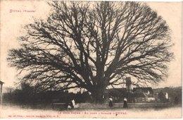 FR88 ETIVAL - Weick 6780 - Le Gros Chêne - Au Fond L'abbaye - Animée - Belle - Etival Clairefontaine