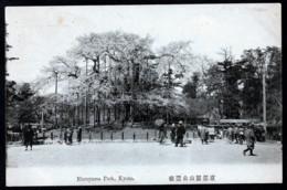 CPA ANCIENNE JAPON- KYOTO- MARUYAMA PARK-  TRES BELLE ANIMATION- ARBRES EN FLEURS- - Kyoto