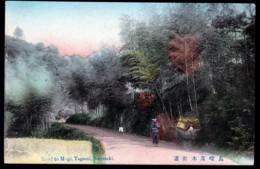 CPA ANCIENNE JAPON- NAGASAKI- ROAD TO MOGI TAGAMI- TRANSPORT DE MARCHANDISE SUR ZEBU- - Sonstige
