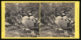 Stereoview - Becky Fall DEVON By Francis Bedford - Visionneuses Stéréoscopiques