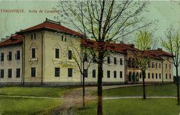 Romania, TÂRGOVIȘTE, Școală De Cavalerie (1911) Postcard - Roemenië