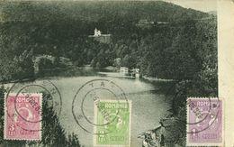 Romania, BĂILE SOVATA, Lacul Ursul Cu Vila Illyés (1926) Postcard - Romania
