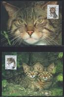 WWF-SLOWAKIJE-EUROPESE WILDE KAT-stamps+4 FDC + 4 MAX - THEMA DIEREN - WILD LIFE - ANIMALS - KATTEN - CATS - FDC