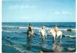 13* FOLKLORE CPSM(10x15cm) En Camargue -  Cavaliers - Trachten & Folklore