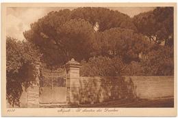 NAPOLI - Il Chiostro Dei Desideri - Editeurs L. & L. - Napoli