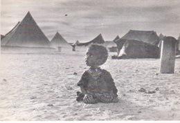 Front Polisario. Sahara Occidental. Pueblo Saharaui. Camp De Réfugiés. - Mauritania
