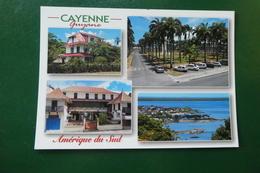 YY ) Cayenne - Cayenne