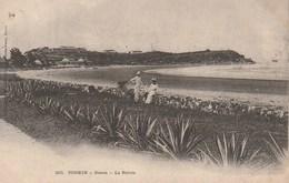 Tonkin - Doson - La Pointe - Vietnam