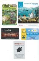 17370 - LOT DE PETITES CARTES PUB - THEME TORTUES - (Carte Météo - Aquarium De Noirmoutier Et Terrarium De Kerdanet - Ma - Schildpadden