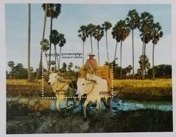 CAMBODGE / CAMBODIA/ S/S Khmer ASPECT 2004 - Cambogia