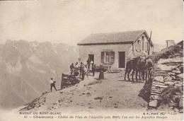 74 CHAMONIX MONT BLANC CHALET DU PLAN DE L AIGUILLE LES AIGUILLES ROUGES EDITEUR CATALA BF 45 - Chamonix-Mont-Blanc