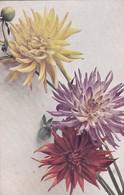 Lot De 20 CPA  De FLEURS  FANTAISIES DIVERS . - Flowers