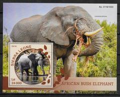 SIERRA LEONE   BF 873  * *  ( Cote 20e ) Elephants D Afrique - Eléphants