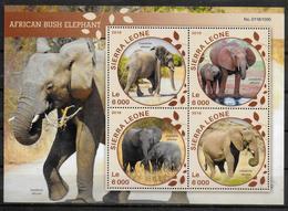 SIERRA LEONE   Feuillet  N° 5653/56  * *  ( Cote 20e ) Elephants D Afrique - Eléphants