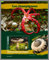 GUINEA REP. 2019 MNH Mushrooms Pilze Champignons S/S - OFFICIAL ISSUE - DH1949 - Funghi