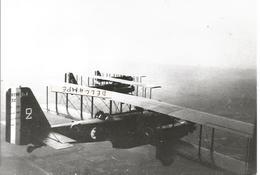 PHOTO AVION LIORé ET OLIVIER LEO 206 EN VOL GROUPé  N°32 17X11CM - Aviation