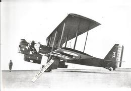 PHOTO AVION LIORé ET OLIVIER LEO 206  N°26      17X11CM - Aviazione