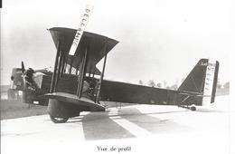 PHOTO AVION LIORé ET OLIVIER LEO 206 B  N°7   17 X11CM - Aviazione