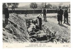 MILITARIA - Campagne De 1914, Enfouissement Des Chevaux Après Le Combat - Guerre 1914-18
