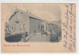 Gruss Aus Busenwurth - Animiert - 1899        (A-145-190609) - Altri